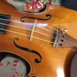 ヴァイオリンの駒